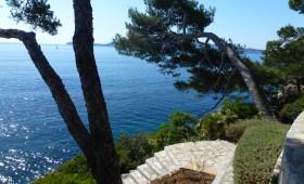 Garden in Formentor