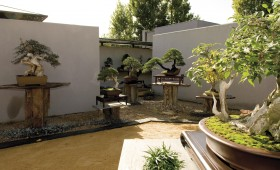 Bonsai Museum of Alcobendas