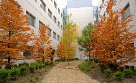 Rio Hortega University Hospital