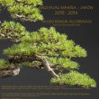 Bonsai Exhibit – Dual Year Spain – Japan 2013-2014